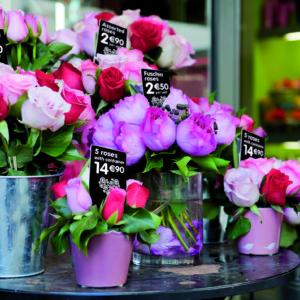cenovky Edikio jsou vhodné i pro květiny, nevadí jim vlhké prostředí